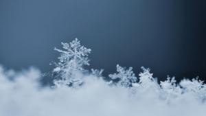 Douche de neige Snow Fall | Ambiance bien-être